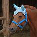 Ohrengarn für Ponies/fly bonnet for ponies pattern