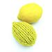 Lemons Are For Libertines pattern