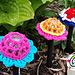 Solar fun flower Lamp cover pattern