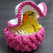 Albert The Fancy Chick pattern