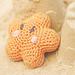 Bashful Starfish pattern
