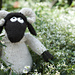 Wee Blackface Sheep 2 pattern