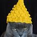 International Cat Hat: Thailand pattern
