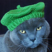 International Cat Hat: France, Le Mieux pattern