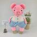 Moyo The Pig Amigurumi pattern