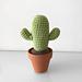 Mini Desert Cactus pattern